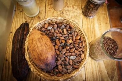 Fèves de cacao représentant le goût amer