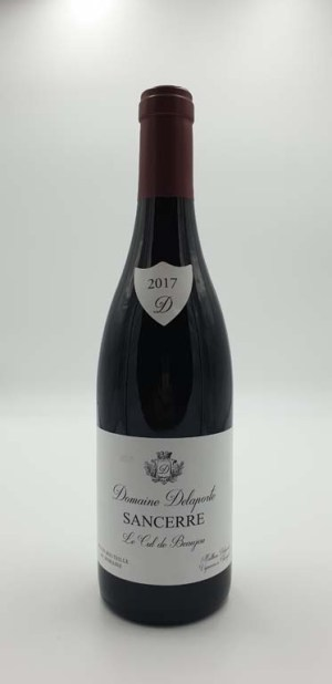Domaine Delaporte - Sancerre - Cul de Beaujeu - 2017