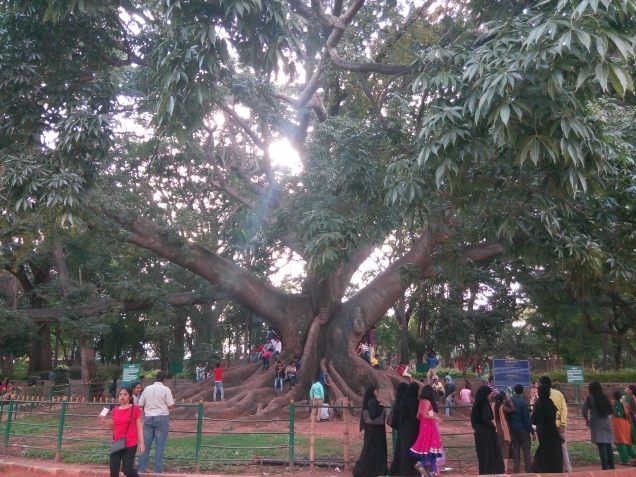 Lalbagh Botanical Park