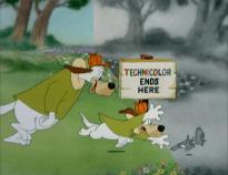 luckyduckytechnicolor