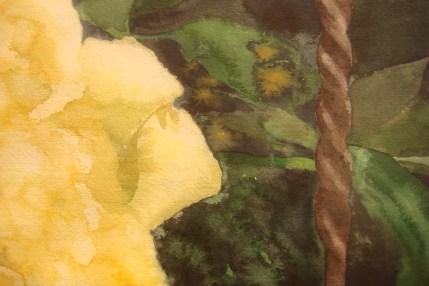 Eileen Goodman watercolours Woodmere Nov 2015-01