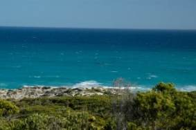 Southern Right Whales are part of the scenery here from June to October