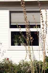 Topstyrede vinduer i plast