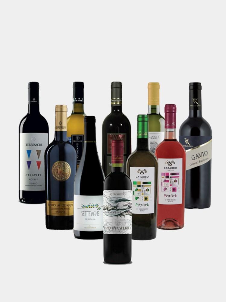 Vine and Soul Premium Case