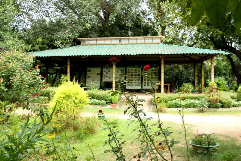 The Visitor Center - Butterfly Park Chandigarh