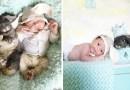 Забавные фотографии двухнедельного ребенка и крольчихи.