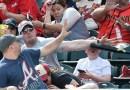 Парень спас мальчика от удара битой по голове на матче по бейсболу.