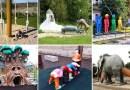Эти 25 детских площадок заставят вас ужаснуться.