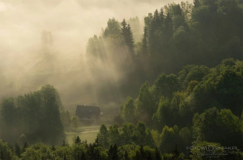 cozy-cabins-in-the-woods-vinegret (20)