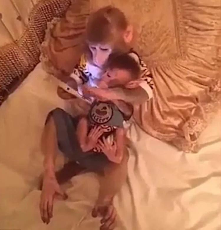 makaka-s-detenishem-polzuyutsya-smartfonom-vinegret (1)