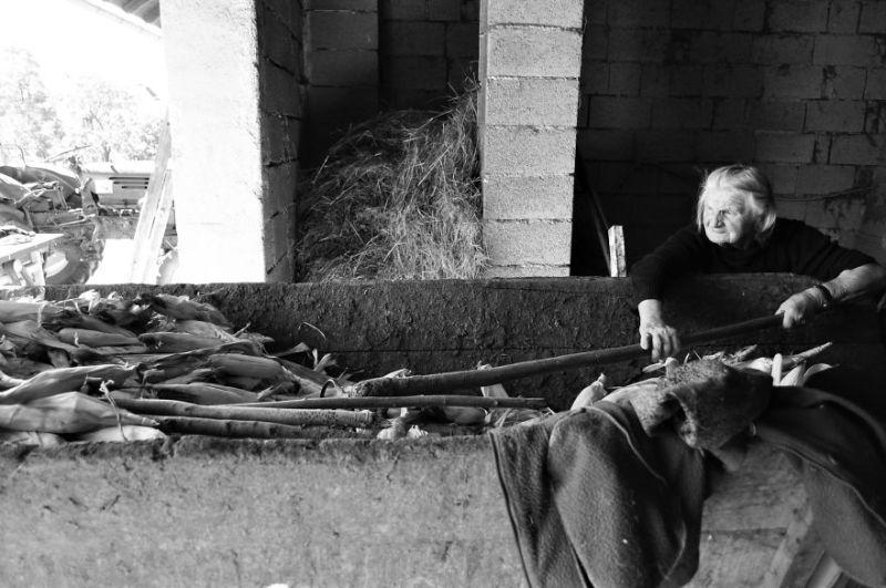 fotograf-pokazala-odin-den-iz-zhizni-svoej-babushki-vinegret-34