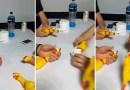 Видео: Зажигательный мотивчик создали с помощью резиновых курочек.