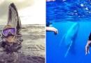 Парень смог сделать фотобомбу, сфотографировавшись с китом.