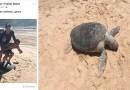 Дурачки, сделавшие селфи верхом на черепахе, могут попасть на крупный штраф в размере $20000.