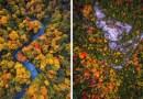 Красота осени в Северо-Восточной части США, снятая с высоты птичьего полета.