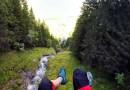 Видео: Шикарный спидглайдинг от первого лица в Швейцарских Альпах.