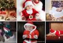 Ожидания VS. Реальность: Смешные рождественско-новогодние фотографии с совсем еще маленькими детьми.