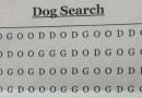 Отыщите ли вы среди всех этих букв слово «DOG»?