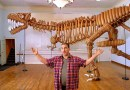Мужчина создал из 1400 надувных шариков скелет тираннозавра в натуральную величину. [Видео]