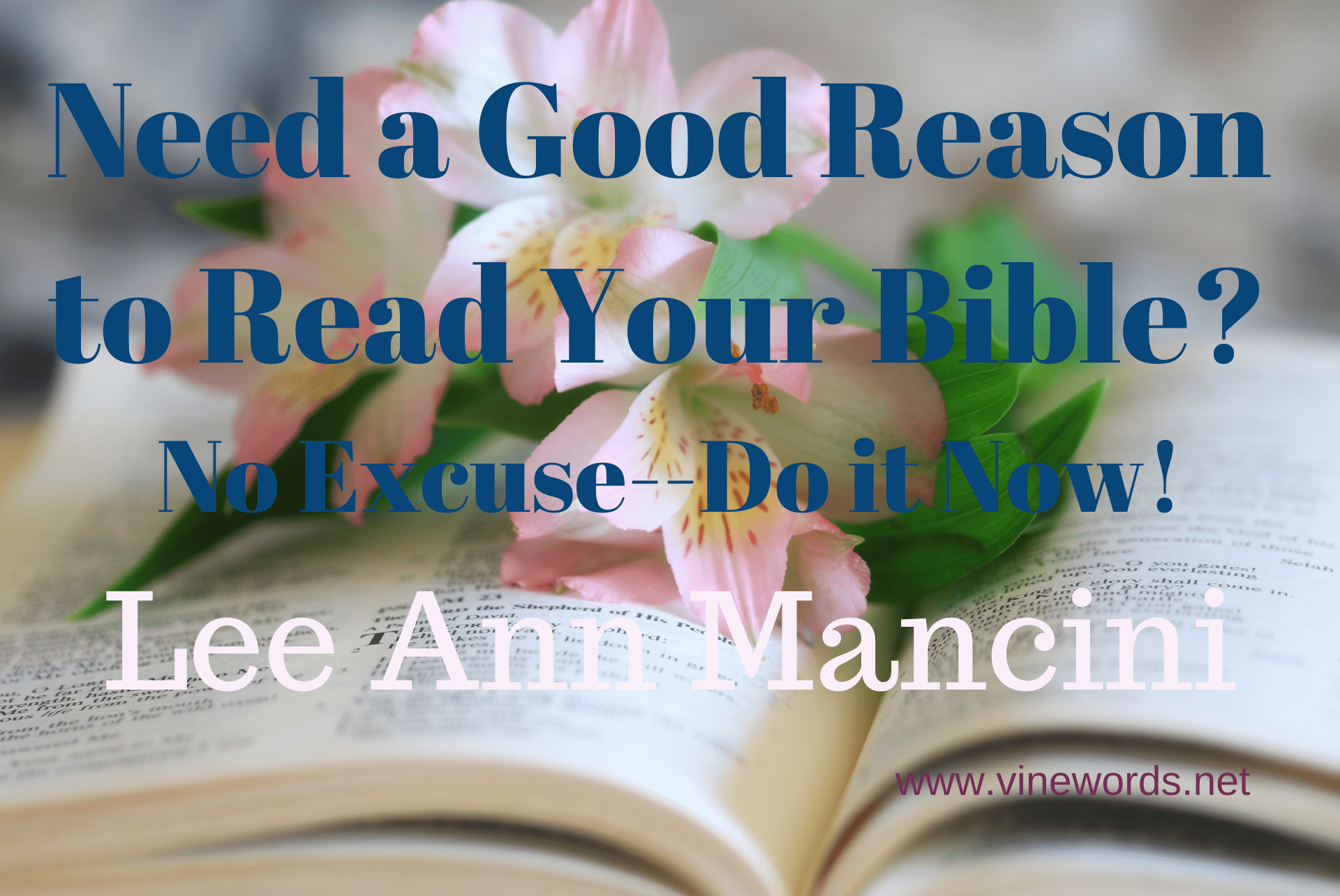 Lee Ann Mancini: Need A Good Reason to Read Your Bible? No Excuse – Do It Now!