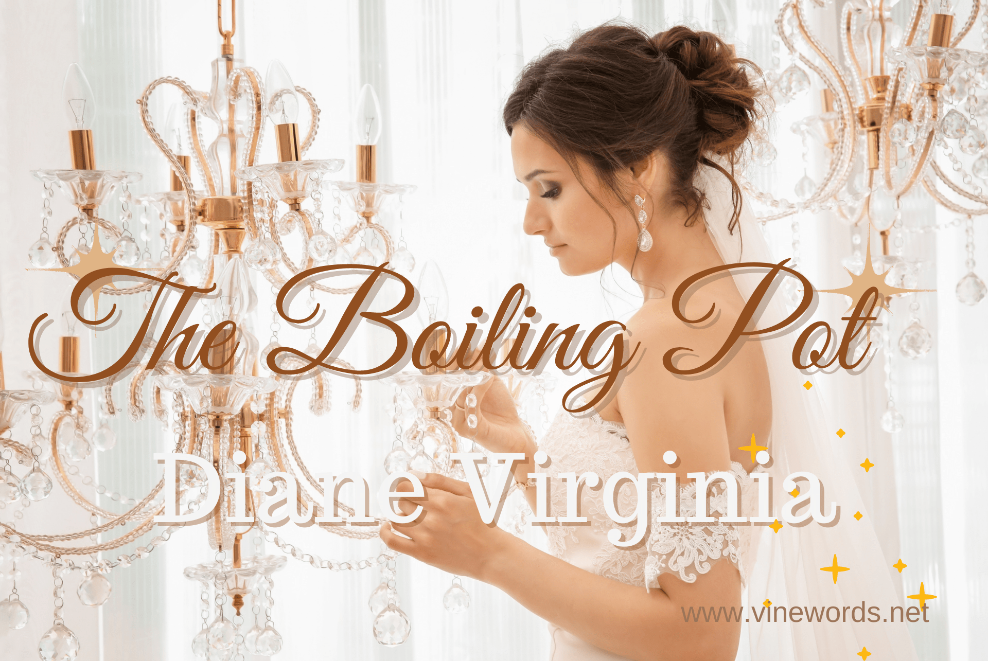 Diane Virginia: The Boiling Pot