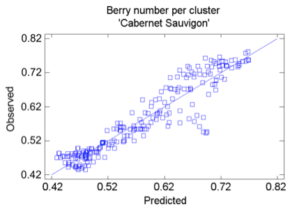 Detection of individual berries in a grapevine cluster by automatic image analysis (3/3)