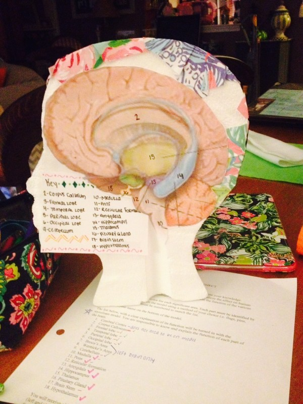 ap psychology project ideas