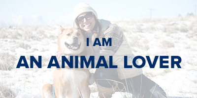 VIN Foundation | Supporting veterinarians to cultivate a healthy animal community | I am | I am an animal lover