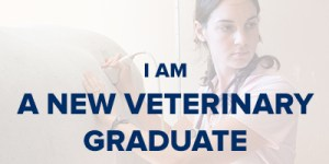 VIN Foundation | Supporting veterinarians to cultivate a healthy animal community | I am | I am a recent veterinary school graduate | veterinary school graduate
