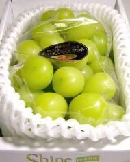 Nho mẫu đơn Nhật 2 – Vinfruits.com