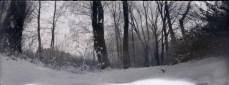 photography snow pinhole