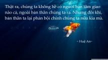ocean_life-wallpaper-1600x900