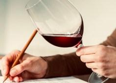 Degustação de vinhos – parte 1 – análise visual