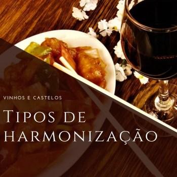 Harmonização de vinho com comidas