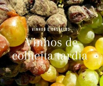 Conheça vinhos de colheita tardia