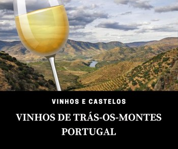 Região vinícola Trás-os-Montes – Portugal