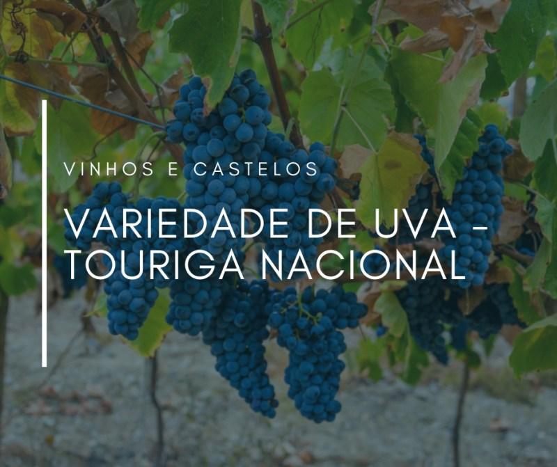 Variedade de uva: Touriga Nacional