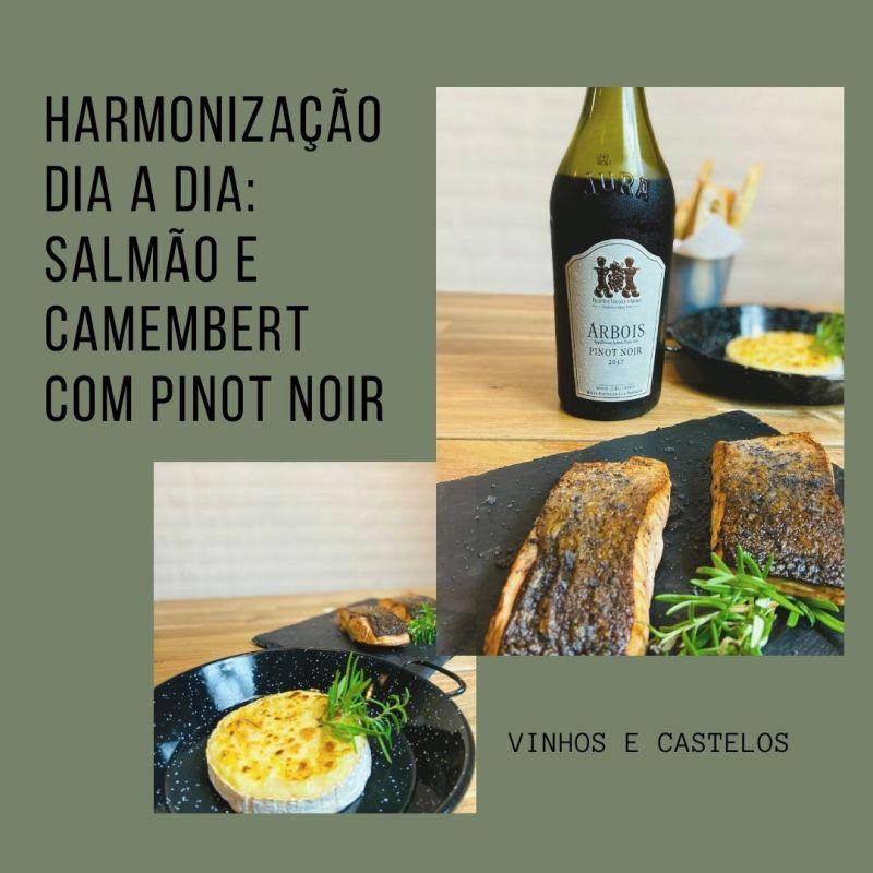Harmonização para o dia a dia: Pinot Noir com salmão na manteiga