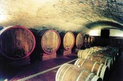 La cantina di invecchiamento del vino sotto al castello