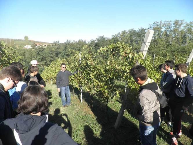 eugenio-gandolfi-in-vineyard