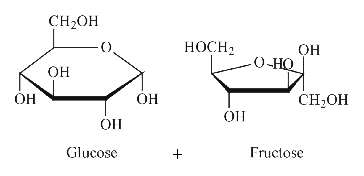 Residual Reducing Sugars – Vinmetrica
