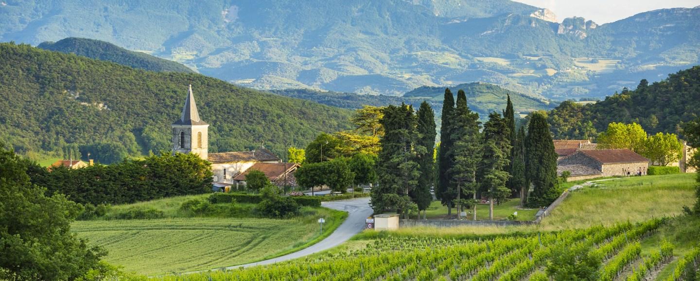 Vignobles en diois / Vineyards in diois (pic: Inter Rhone)