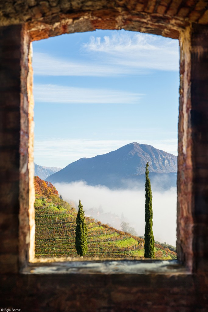 2nd PlaceErrazuriz Wine Photographer of the Year - Places© Egle Berruti,Switzerland Window with a view The view from the Castle of Morcote, overlooking the vineyard and the