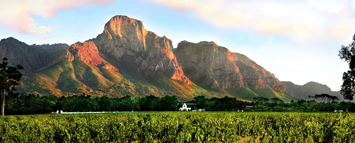 Boschendal (pic: Omtis Fine Wines)