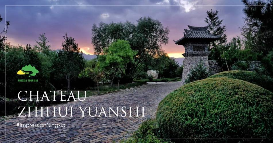 Zhihui Yuanshi winery is among the first wineries to gain second growth status within Ningxia's wine classification system (pic: Discover Ningxia)