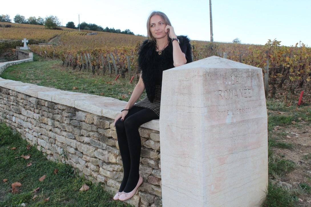Винотурс в Бургундии