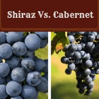 Shiraz vs Cabernet: What are the Differences?