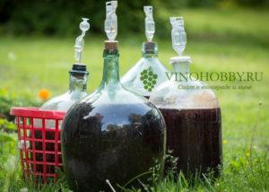 Casa-vinho 12