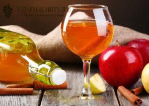 Casa-vinho 2