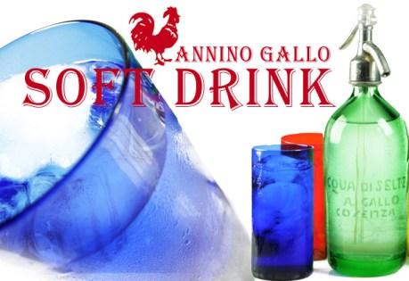 Annino Gallo Bevande Gassate E-Book